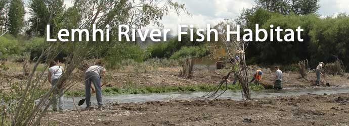 Lemhi River Fish Habitat